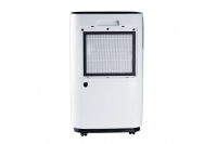 Dehumidifier with air purifier
