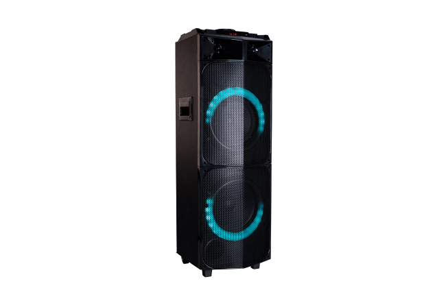 Powerful portable party speaker